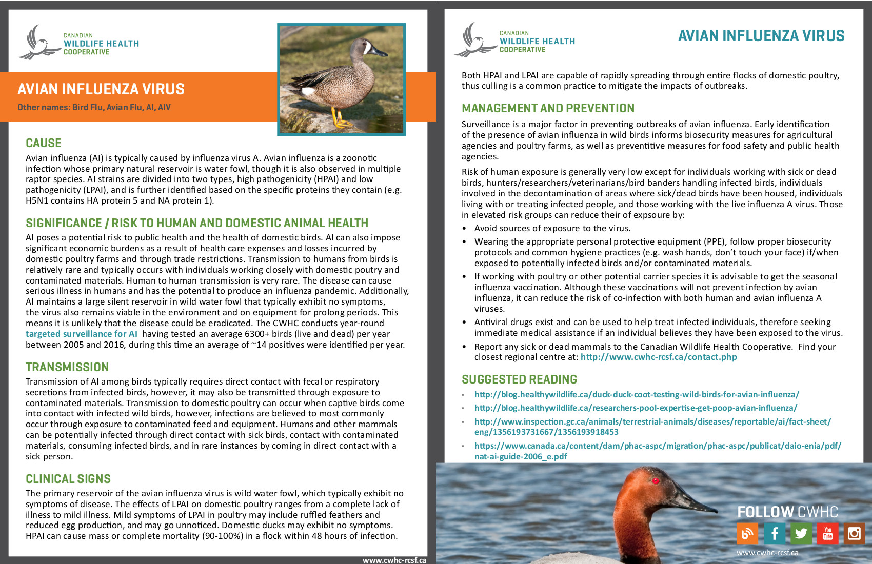 CWHC-RCSF - Canadian Wildlife Health Cooperative / Réseau