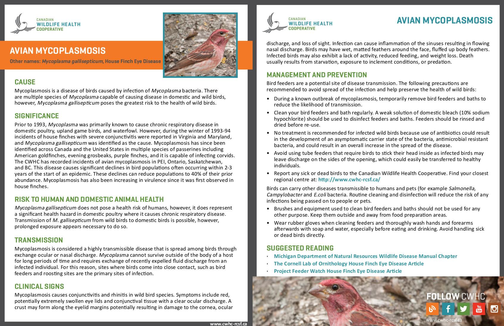 CWHC-RCSF - Canadian Wildlife Health Cooperative / Réseau