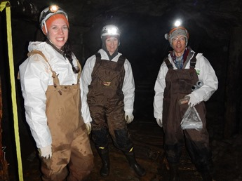 Researchers counting bats in New Brunswick cave - Photo: Karen Vanderwolf